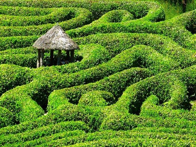 laberinto jardin