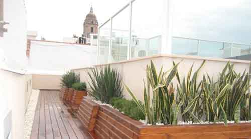 Landscaping Projects In Malaga And Marbella Af Paisajismo