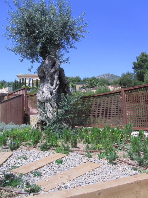 Villa tjk jardin