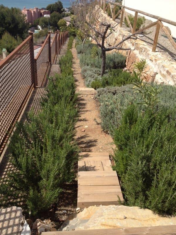 Escalera de bajada en el lateral hacia las distintas paratas, donde se plantaron aromáticas, y árboles mediterráneos