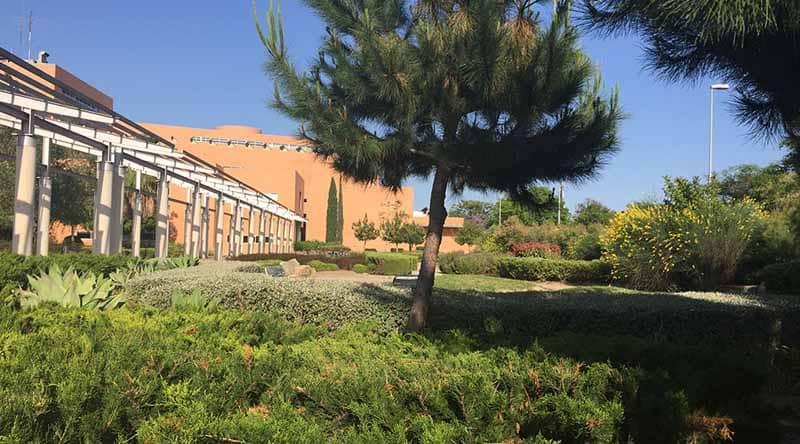 Mediterranean vegetation - Facultad informática uma