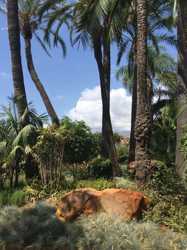Un jardín mediterráneo exhuberante.
