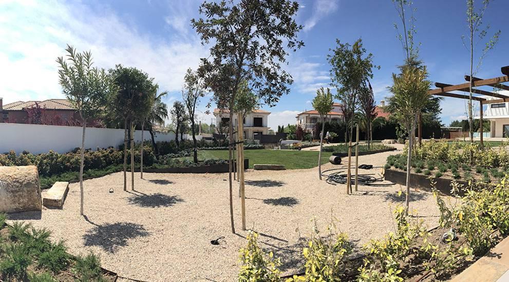 Villa Rey plantas